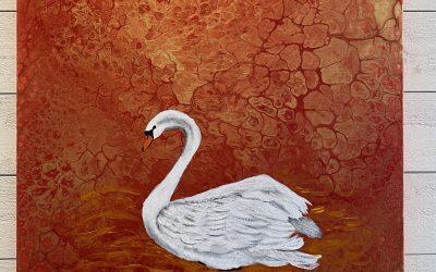 Svan badande i kärlekens färger 50×50 akryl 1500:-
